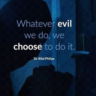 Whatever evil we do, we choose to do it